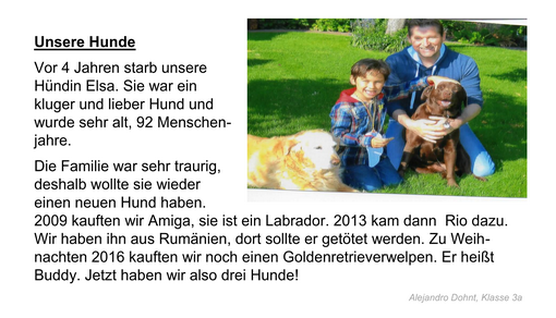 Hunde Page 1